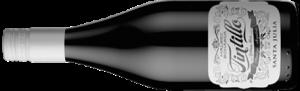 tintillo