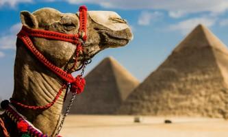 egiptocuadrado