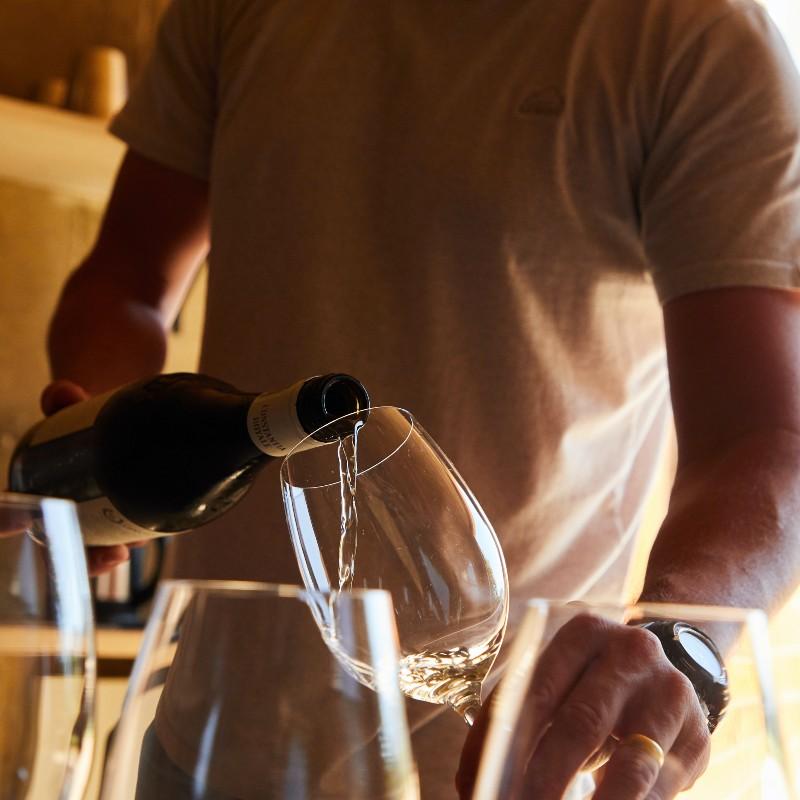 ¿Cómo armar una cata de vinos en casa?